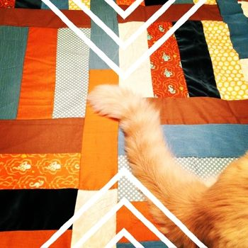 Mr. Pickles and the Quilt Top