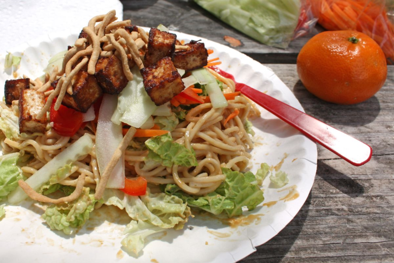 Cold Peanut Noodles | Guest Post from Full and Content | Mary Makes Dinner