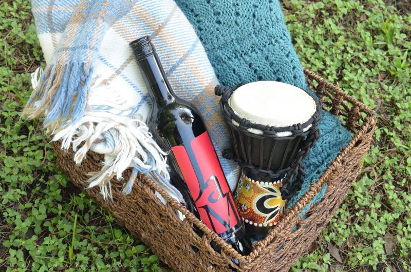 Backyard Bonfire Party Ideas camping smores birthday party ideas Bonfire Party Ideas