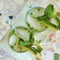 Ginger Mojito Cocktail