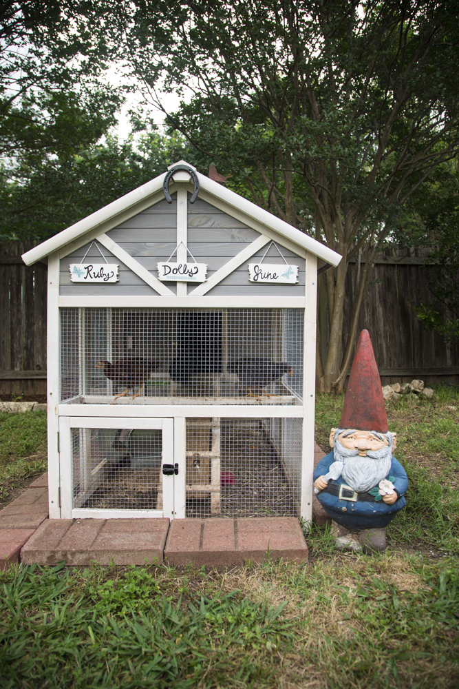 Our Backyard Chicken Coop